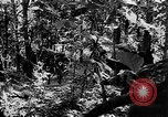 Image of United States troops Burma, 1944, second 58 stock footage video 65675053490