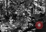 Image of United States troops Burma, 1944, second 59 stock footage video 65675053490
