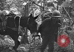 Image of United States troops Burma, 1944, second 60 stock footage video 65675053490