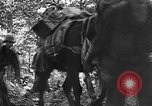 Image of United States troops Burma, 1944, second 62 stock footage video 65675053490
