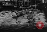 Image of Molch and Biber miniature German submarines Atlantic Ocean, 1944, second 29 stock footage video 65675053512