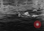 Image of Molch and Biber miniature German submarines Atlantic Ocean, 1944, second 33 stock footage video 65675053512