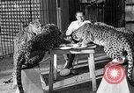 Image of woman trainer Los Angeles California USA, 1935, second 29 stock footage video 65675053530