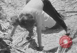 Image of hills of sawdust Portland Oregon USA, 1941, second 33 stock footage video 65675053569