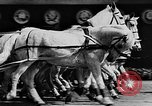 Image of May Day Parade Moscow Russia Soviet Union, 1946, second 62 stock footage video 65675053631