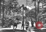 Image of Life in early cooperative community Greenbelt Maryland USA, 1939, second 27 stock footage video 65675053712