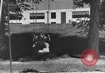 Image of Life in early cooperative community Greenbelt Maryland USA, 1939, second 31 stock footage video 65675053712