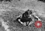 Image of Life in early cooperative community Greenbelt Maryland USA, 1939, second 38 stock footage video 65675053712
