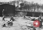 Image of German citizens view concentration camp Germany, 1945, second 2 stock footage video 65675054792