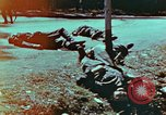 Image of German soldiers killed by Czechs, in Pilsen Czechoslovakia, a month be Pilsen Czechoslovakia, 1945, second 13 stock footage video 65675055606
