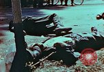 Image of German soldiers killed by Czechs, in Pilsen Czechoslovakia, a month be Pilsen Czechoslovakia, 1945, second 17 stock footage video 65675055606