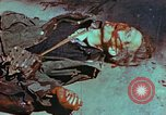 Image of German soldiers killed by Czechs, in Pilsen Czechoslovakia, a month be Pilsen Czechoslovakia, 1945, second 47 stock footage video 65675055606