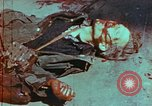 Image of German soldiers killed by Czechs, in Pilsen Czechoslovakia, a month be Pilsen Czechoslovakia, 1945, second 48 stock footage video 65675055606
