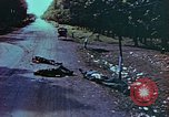 Image of German soldiers killed by Czechs, in Pilsen Czechoslovakia, a month be Pilsen Czechoslovakia, 1945, second 50 stock footage video 65675055606