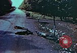 Image of German soldiers killed by Czechs, in Pilsen Czechoslovakia, a month be Pilsen Czechoslovakia, 1945, second 53 stock footage video 65675055606