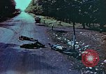 Image of German soldiers killed by Czechs, in Pilsen Czechoslovakia, a month be Pilsen Czechoslovakia, 1945, second 57 stock footage video 65675055606