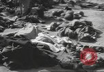 Image of Quartermaster Corps Italy, 1945, second 16 stock footage video 65675057552