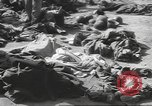 Image of Quartermaster Corps Italy, 1945, second 19 stock footage video 65675057552