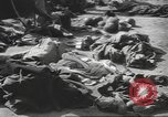 Image of Quartermaster Corps Italy, 1945, second 21 stock footage video 65675057552