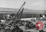 Image of Quartermaster Corps Italy, 1945, second 51 stock footage video 65675057552