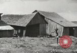 Image of agriculture activities United States USA, 1945, second 25 stock footage video 65675058167