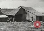 Image of agriculture activities United States USA, 1945, second 27 stock footage video 65675058167