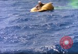 Image of air sea rescue Pacific Ocean, 1945, second 40 stock footage video 65675059714