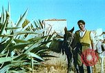 Image of Farmers using animals for transportation Europe, 1950, second 20 stock footage video 65675060860