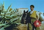 Image of Farmers using animals for transportation Europe, 1950, second 22 stock footage video 65675060860