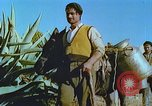 Image of Farmers using animals for transportation Europe, 1950, second 23 stock footage video 65675060860