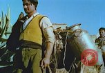 Image of Farmers using animals for transportation Europe, 1950, second 24 stock footage video 65675060860
