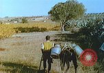 Image of Farmers using animals for transportation Europe, 1950, second 30 stock footage video 65675060860