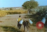 Image of Farmers using animals for transportation Europe, 1950, second 31 stock footage video 65675060860