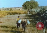 Image of Farmers using animals for transportation Europe, 1950, second 32 stock footage video 65675060860
