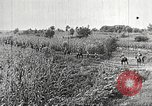 Image of Japanese troops China, 1938, second 49 stock footage video 65675060903