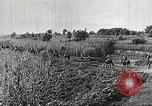 Image of Japanese troops China, 1938, second 50 stock footage video 65675060903