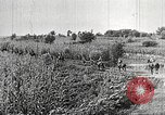 Image of Japanese troops China, 1938, second 51 stock footage video 65675060903
