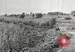 Image of Japanese troops China, 1938, second 53 stock footage video 65675060903