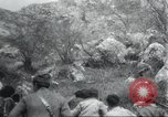 Image of Albania troops Europe, 1917, second 36 stock footage video 65675060929