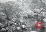 Image of Albania troops Europe, 1917, second 40 stock footage video 65675060929