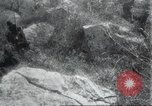 Image of Albania troops Europe, 1917, second 55 stock footage video 65675060929