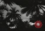 Image of United States soldiers Honolulu Hawaii USA, 1943, second 2 stock footage video 65675060937