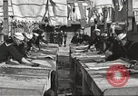 Image of sailors United States USA, 1923, second 12 stock footage video 65675060979