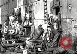 Image of sailors United States USA, 1923, second 43 stock footage video 65675060979