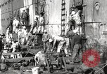 Image of sailors United States USA, 1923, second 44 stock footage video 65675060979