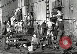 Image of sailors United States USA, 1923, second 48 stock footage video 65675060979