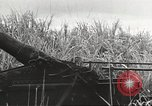 Image of Japanese troops China, 1939, second 44 stock footage video 65675060997