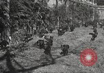 Image of black foxes Seattle Washington USA, 1934, second 28 stock footage video 65675061007