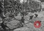 Image of black foxes Seattle Washington USA, 1934, second 30 stock footage video 65675061007