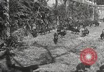Image of black foxes Seattle Washington USA, 1934, second 33 stock footage video 65675061007
